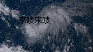 """超级台风""""利奇马"""""""