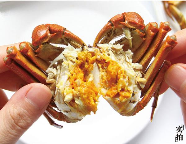 盘锦六月黄河蟹