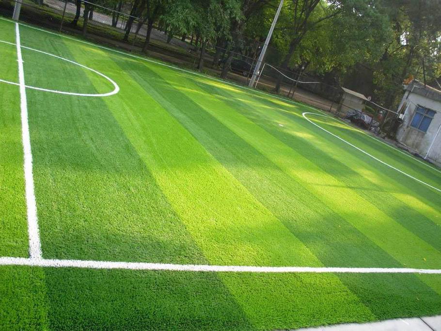 青海人造草坪