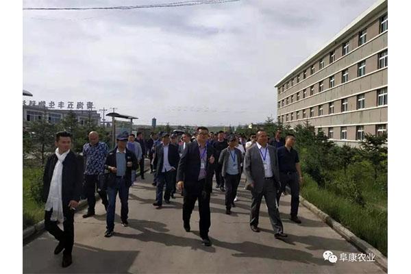 青海看球宝nba直播官网