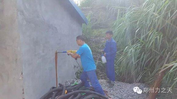 热烈祝贺福建弥高种猪场成功实施清洗系统改进