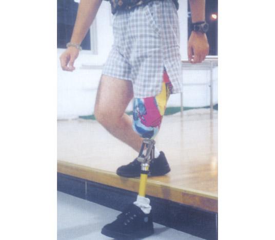机械膝关节