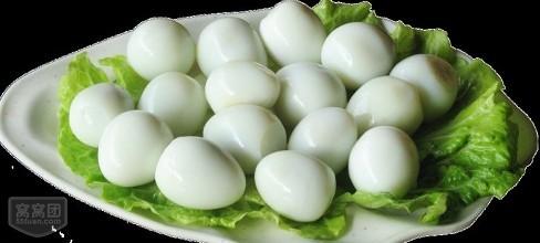 雞蛋剝殼機