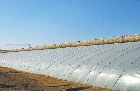 贵州大棚农膜厂家