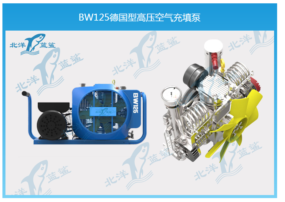 BW125德国型高压空气充填泵