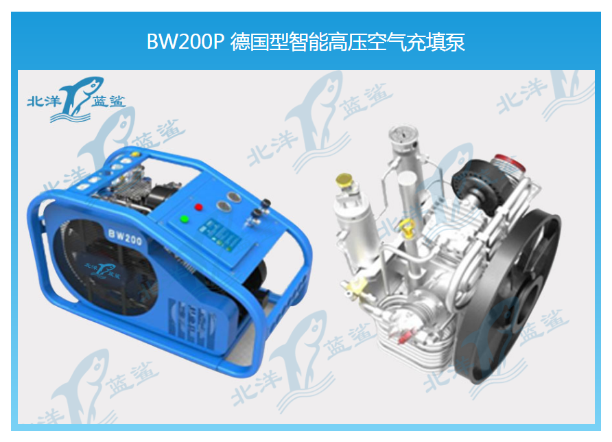 BW200P 德国型智能高压空气充填泵