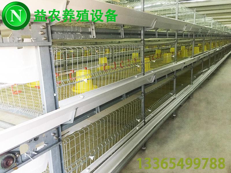 肉雞養殖設備