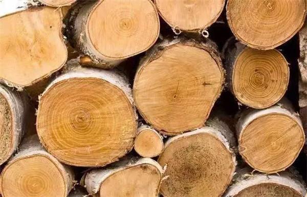营口金丰木业