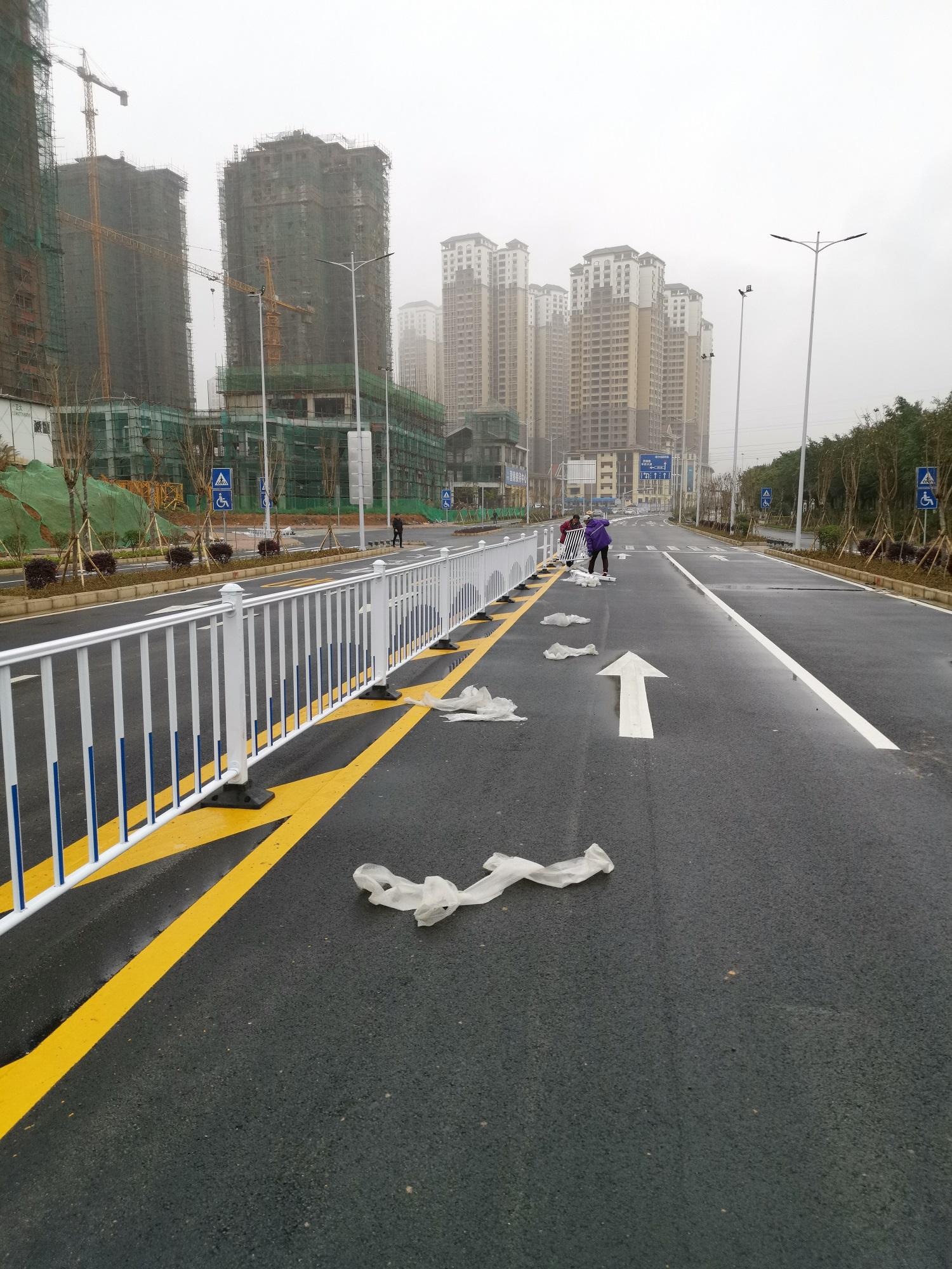来宾交通绿化道路护栏