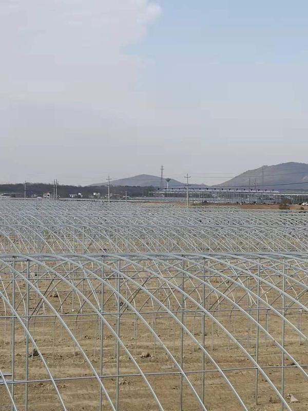 九江武山項目基地工程工作中