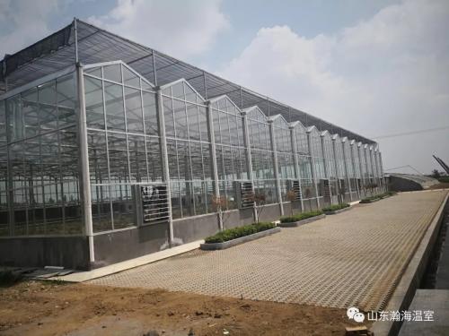 瀚海温室现代农业多功能智能温室的优点和重要性