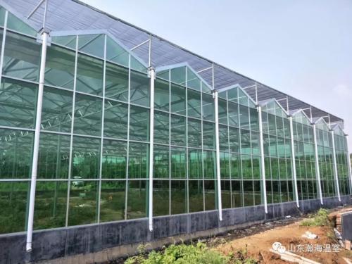 玻璃温室和塑料大棚哪个保温好?