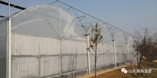瀚海温室-薄膜连栋大棚如何很好的提高透光性