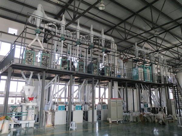 100吨玉米制粉机械设备