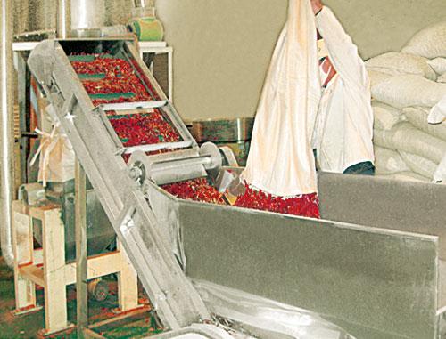 辣椒制粉设备