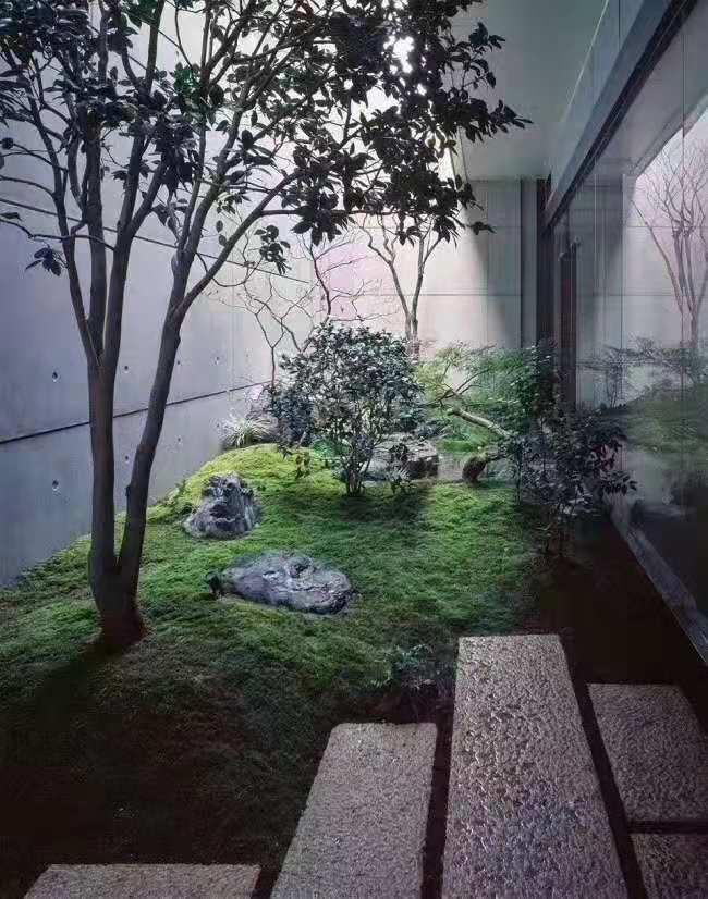 园林绿化景观