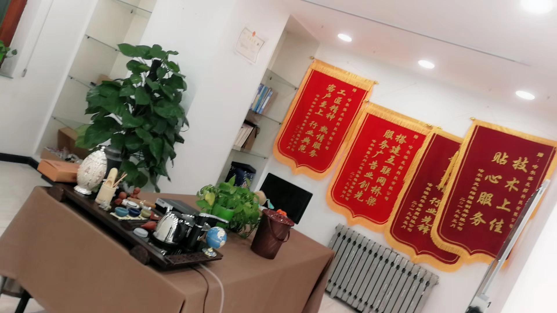 哈尔滨网络公司
