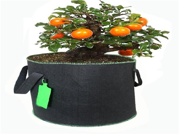 羊毛毡植物袋