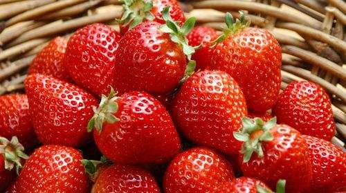 广西水果批发市场
