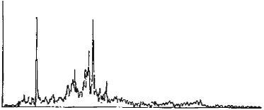 《高速旋轉機械的頻譜分析》