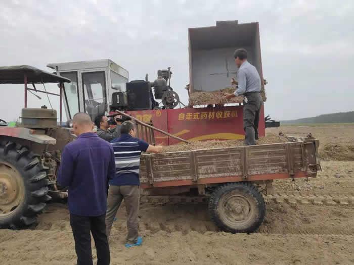 油莎豆全程机械化生产技术现场观摩会