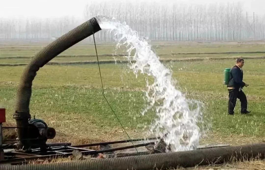"""小麦返青""""第一水""""啥时浇?早浇还"""