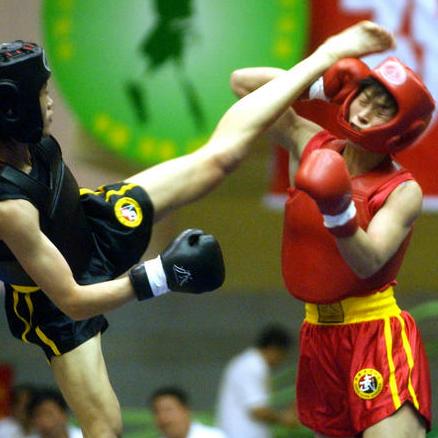 河南武术学校