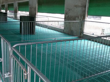猪用保育产床厂家