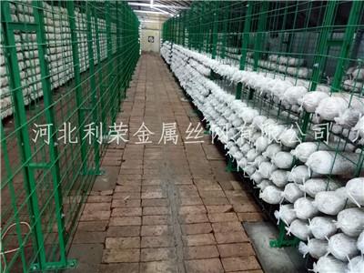 食用菌网格