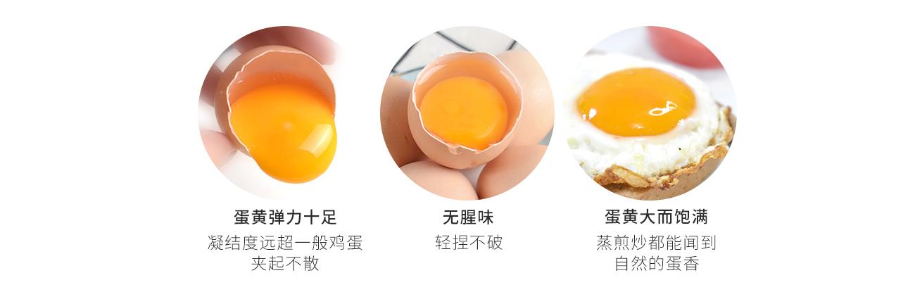 大漠福林沙棘鸡蛋