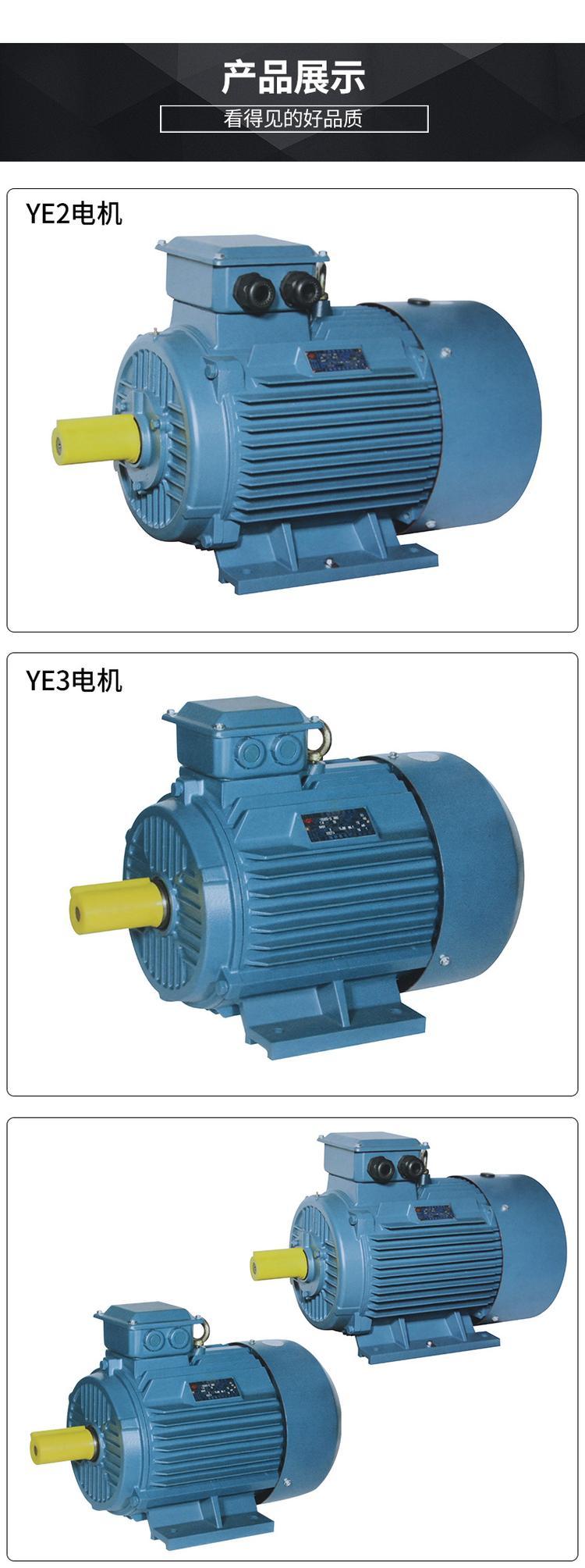 YE3三相异步电动机