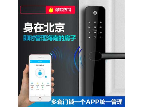 Z6公寓民宿专用智能锁