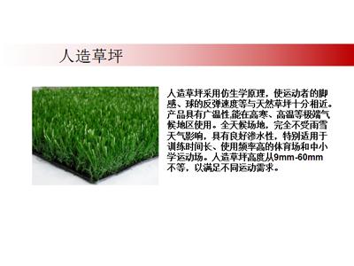 甘肅人造草坪
