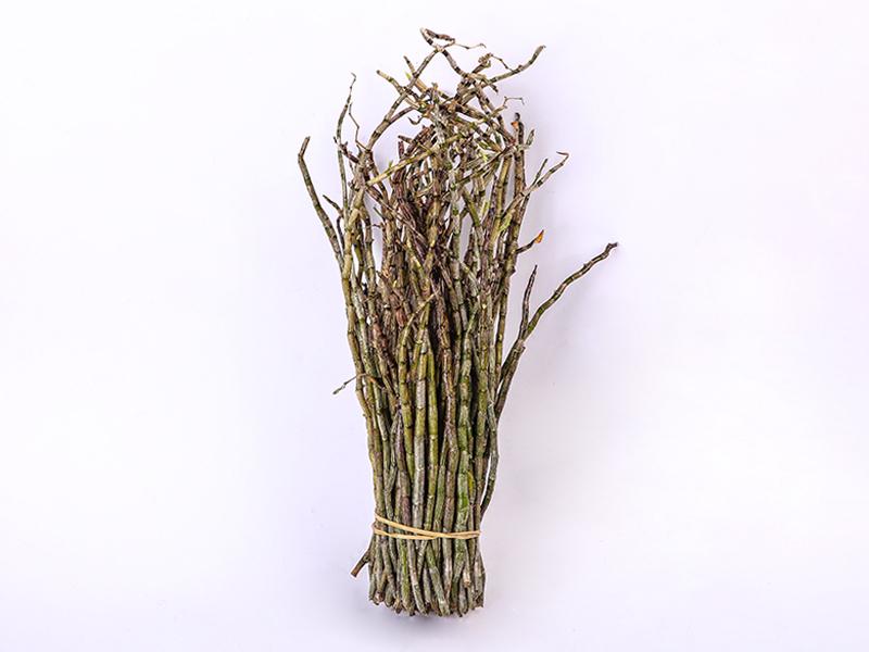 铁皮石斛-绿野丑条