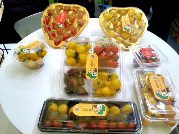 亚果会现场报道:「阿诺特」全年供应有风味的番茄红素西瓜