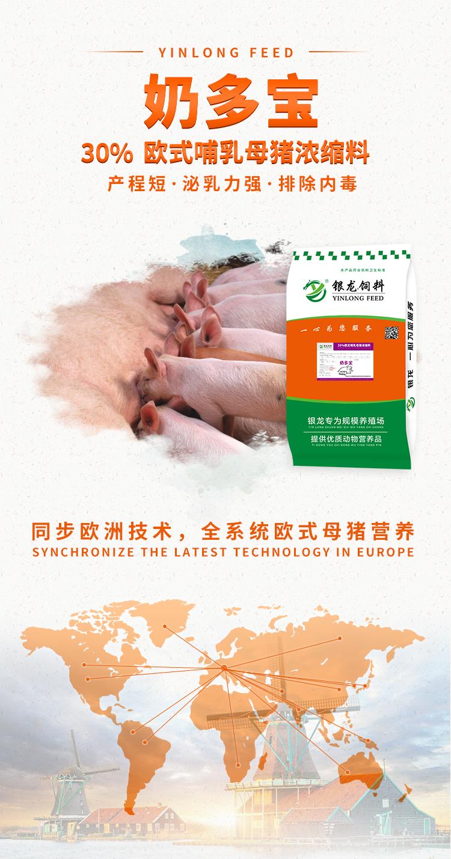 欧式母猪料