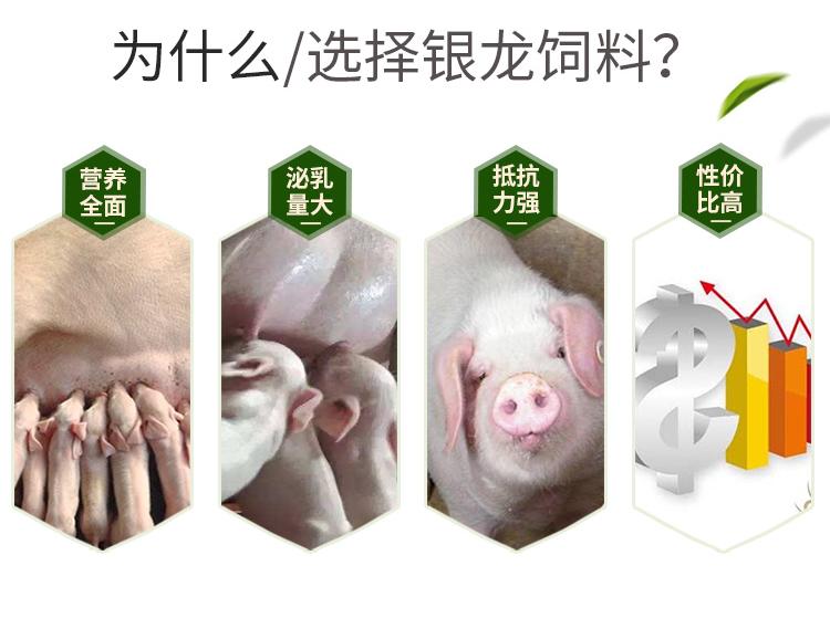 哺乳母猪预混料