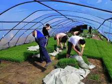 撸袖发力、奋战旺季——为春耕生产一线的员工点赞