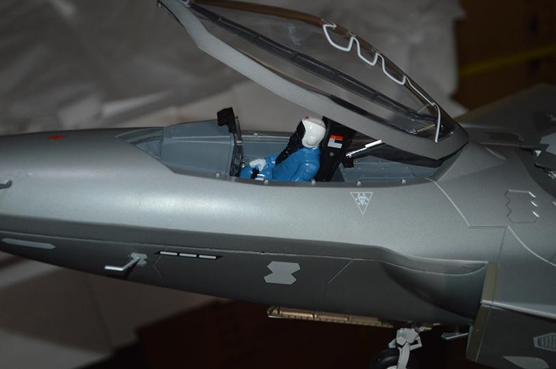 1:20迷彩歼20战斗机模型