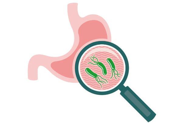 美年之声第3期丨它的感染率高达56.22%,你的胃里也许有它!