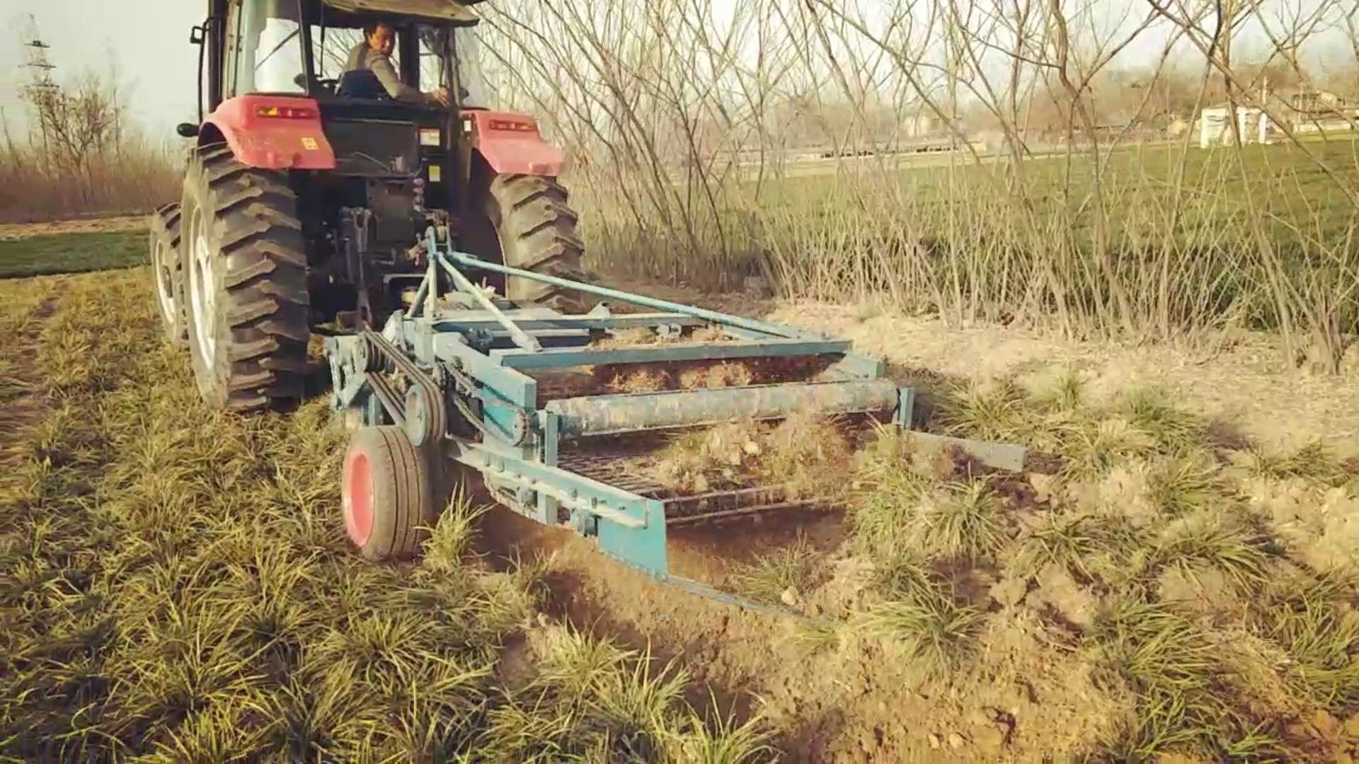 麦冬收获机