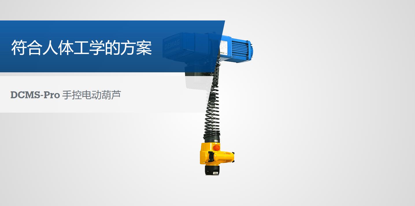 DCMS-Pro 手控电动葫芦