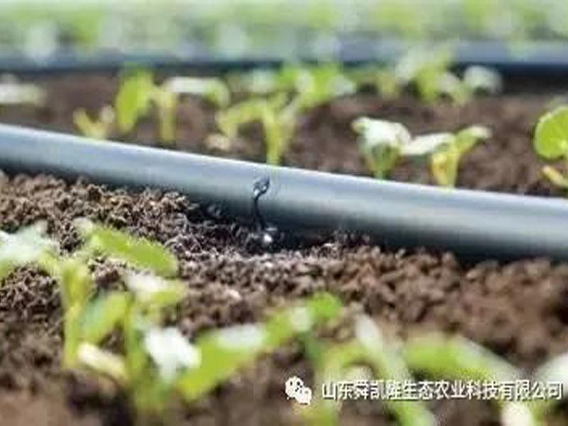 水肥药一 体化技术特点