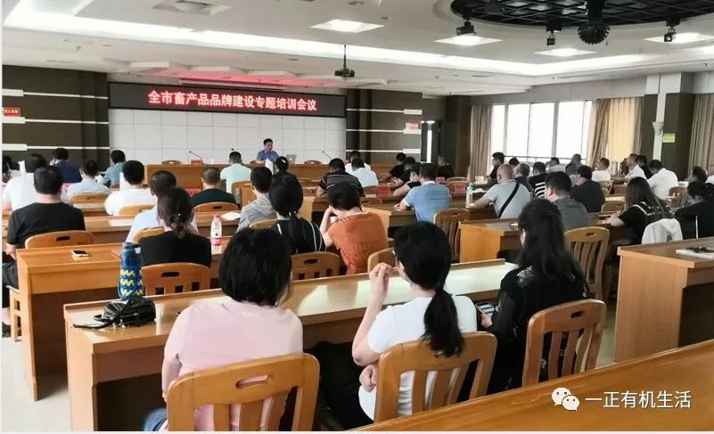 知名品牌定位专家张灿中老师莅临一正指导工作