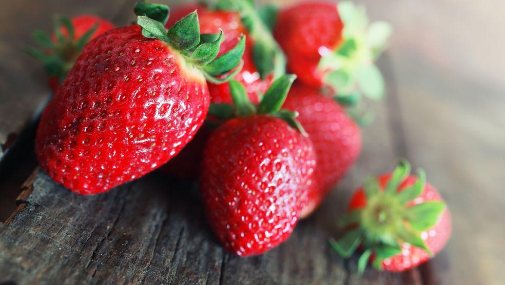 白雪公主草莓苗.jpg