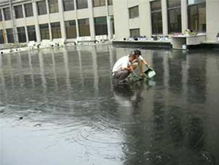 新莊防水公司