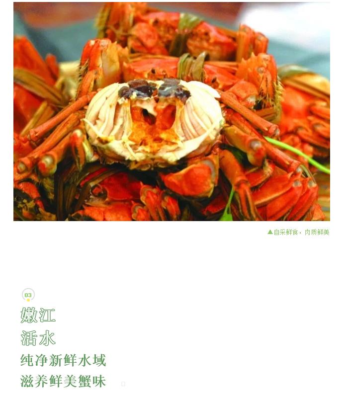 鲶鱼沟九月鲜有机大闸蟹
