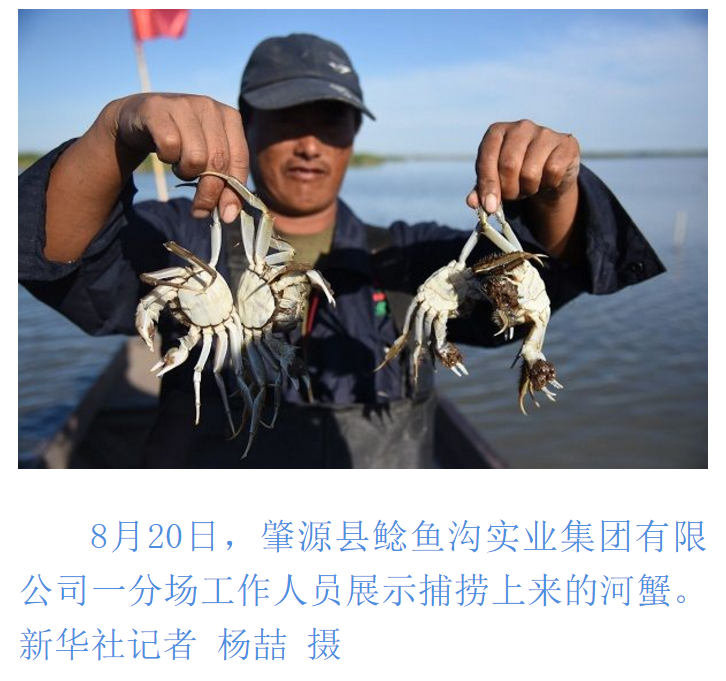鱼肥蟹美丰收时