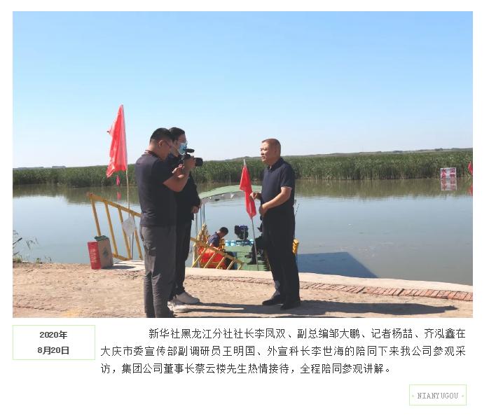 新华社黑龙江分社来公司参观采访