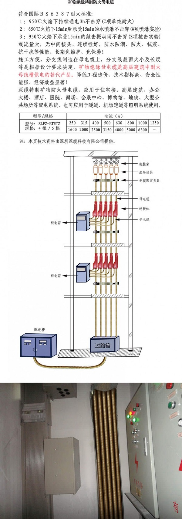 深缆电缆集团官网